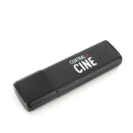 Modelo USB ALU 4 GB