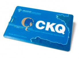USB tarjeta apersonalizada con tu logo